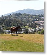 Horse Hill Mill Valley California 5d22662 Metal Print