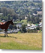 Horse Hill Mill Valley California 5d22663 Metal Print