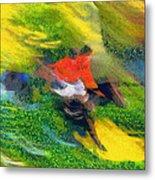 Horse Hurdles Metal Print
