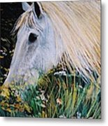 Horse Ign Metal Print