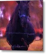 Horse In Autumn Light Metal Print