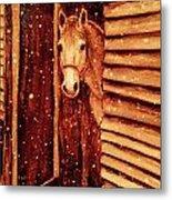 Horse In Snow Metal Print