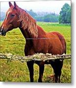 Horse In The Pasture Metal Print