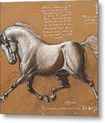 Horse Is Beautiful # 4 Metal Print