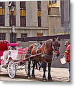 Horse Needs Water In Old Montreal-quebec-canada Metal Print