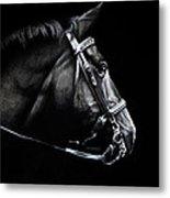 Horse No. 2 Metal Print