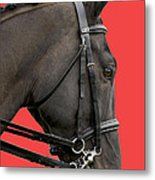 Horse On Red Metal Print