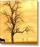 Horse On The Hill Metal Print