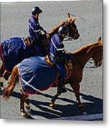 Horse Police Metal Print