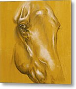 Horse Portrait Metal Print by Tamer and Cindy Elsharouni