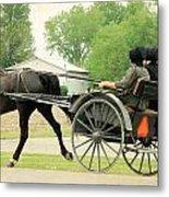 Horse Powered Transportation Metal Print