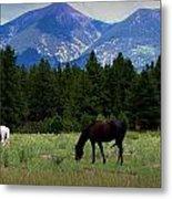 Horse Ranch Below The Peaks Metal Print