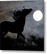 Horse Silhoette Metal Print