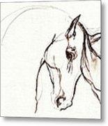 Horse Sketch Metal Print