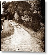 Horse Trail Metal Print by John Rizzuto