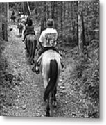 Horse Trail Metal Print