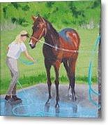 Horse   Wash Metal Print