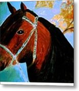 Horse With Long Forelocks Metal Print