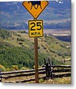 Horseback Riding Sign Metal Print