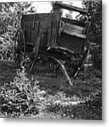 Horseless Blk And Wht  Metal Print