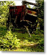 Horseless Color Metal Print