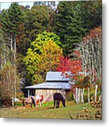 Horses And Barn In The Fall Metal Print