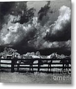 Horses Black And White Infrared Stormy Sky Nature Landscape Metal Print