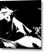 Horses - Black And White Metal Print