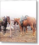 Horses In The Mist - Haleakala Metal Print