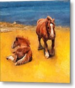 Horses On The Coast Of Brittany Metal Print