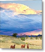Horses On The Storm 2 Metal Print