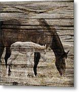 Horses On Wood Metal Print