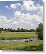 horseshoe shaped moat of Fort Elden Westerveld in park in Arnhem Netherlands Metal Print