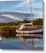 Horsey Mere In Evening Light Metal Print