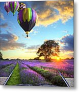Hot Air Balloons And Lavender Book Metal Print