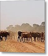 Hot Dry And Dusty Metal Print