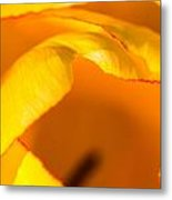 Hot Edges Metal Print