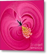 Hot Pink And Round Metal Print by Anne Gilbert