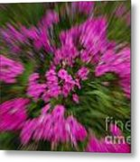 Hot Pink Flower Zoom Metal Print