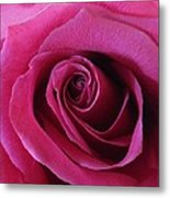 Hot Pink II Metal Print