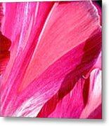 Hot Pink Metal Print by Rona Black