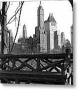 Hotels Seen From Central Park  Metal Print