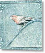 House Finch With Colored Sketch Effect Metal Print