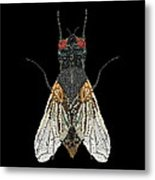 House Fly Bedazzled Metal Print
