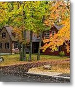 House Surrounded With Colors Metal Print