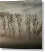 How Nature Hides The Wrinkles Of Her Antiquity Under Morning Fog And Dew Metal Print