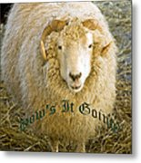 Hows It Going Old English Hunter Green Metal Print