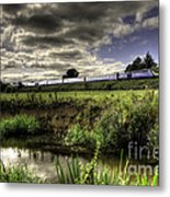 Hst In The Culm Valley  Metal Print