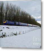 Hst In The Snow  Metal Print