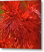 Hubble Galaxy With Red Maple Foliage Metal Print